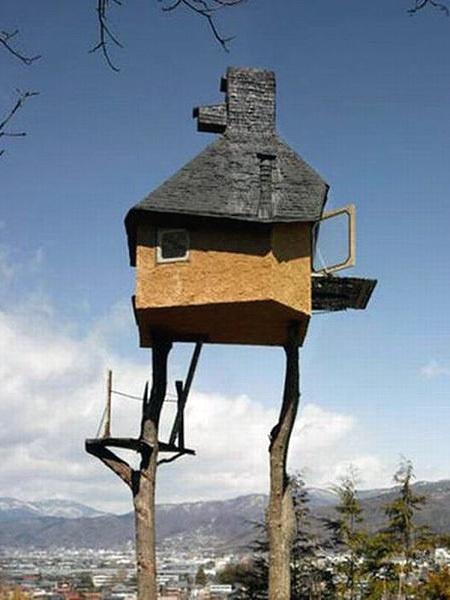 Case sull'albero davvero estreme !!