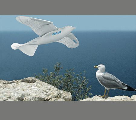 Il primo uccello artificiale che vola da solo !!